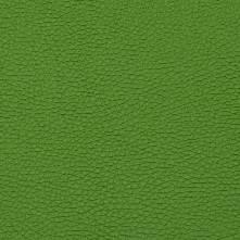 055 ярко-зелёный
