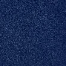 089 синий далия