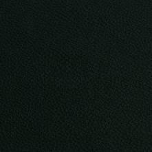 110 тёмно-зелёная далия
